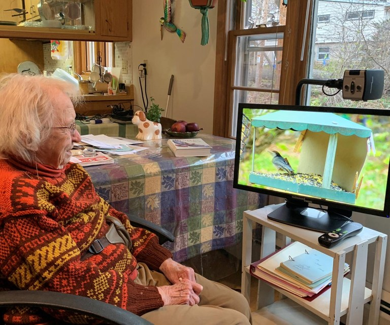 A woman watches her bird feeder from her living room using a CCTV and monitor