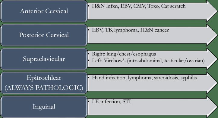 ddx-locoregional-lan