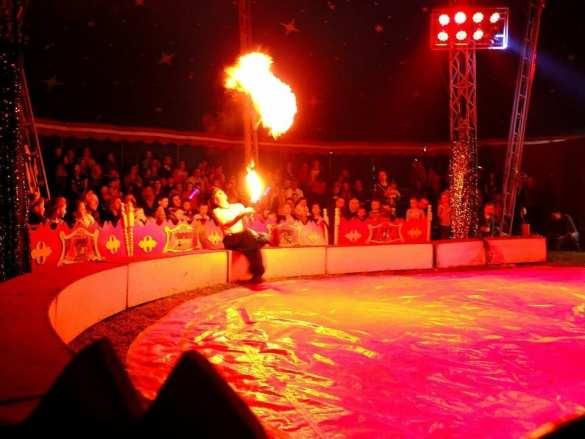Jubileuszowe widowisko Cyrku Safari w Mielcu ![FOTO]
