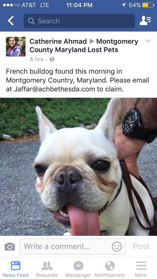 Facebook上Jaffar先生发帖称找到狗蛋