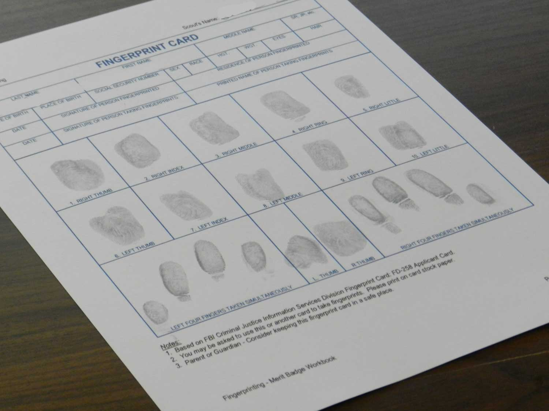 Fingerprint Card 2 Web