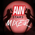AVN Stars Mixer