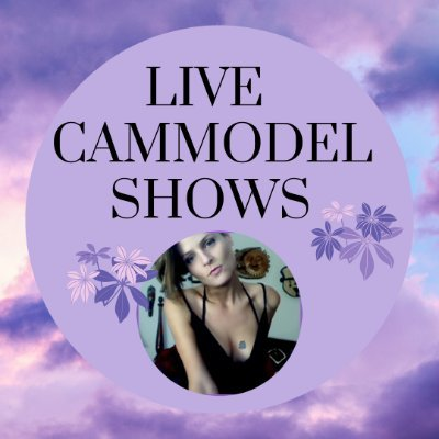 Indie site LiveCamModelShows goes dark without warning
