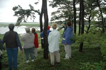 WCT Fox Island Trails walk July 2005 027