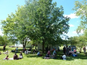Farm Day @ The Farm Hadashville MB | Hadashville | Manitoba | Canada