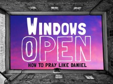 Windows Open
