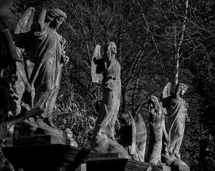 04_Ian Waterman_Fallen Angels