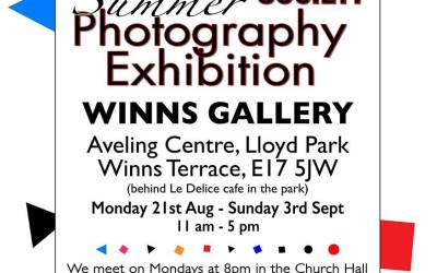 Summer Exhibition – Winns Gallery in Lloyd Park 2017