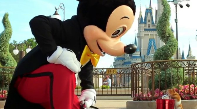 VIDEO: Tiny Hamster Has Huge Adventure At Magic Kingdom