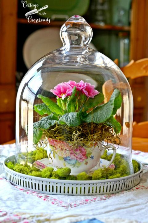 8 Simple Teacup Gardens DIY Miniature Gardens