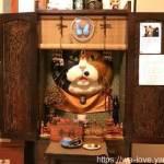 猫好き必見、人気沸騰中、全国から猫好きが集まる萩の雲林寺。