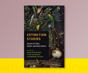 Book review: Extinction Studies. Stories of Time, Death, and Generations