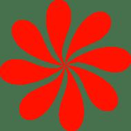 SOFIA - Selbsthilfe- und Forschungsinstitut