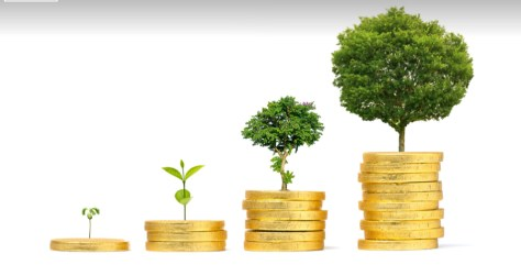 A group of coins with trees growing out of them  Description automatically generated with low confidence