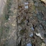 Body of Newborn Baby Found dumped inside Gutter in Minna, Niger state (Photo)