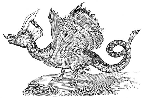 Swan-Dragon (French).