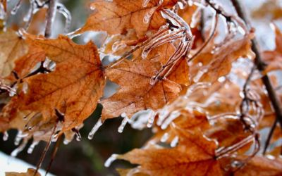 BRRRR … how to stay cool in today's hot real estate market