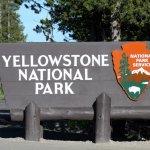 Йеллоустоун национальный парк