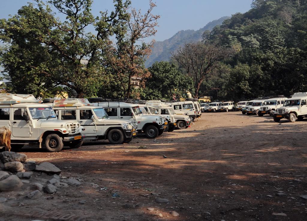 Автопром Индии