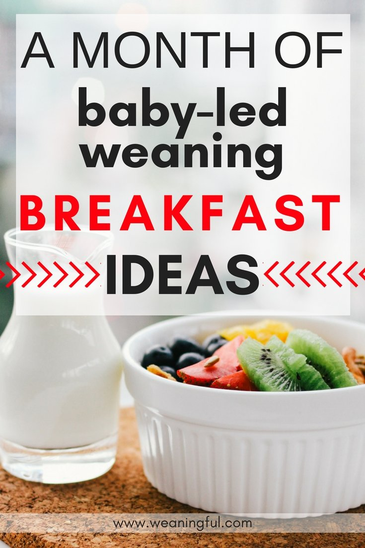 baby led weaning recipes pdf