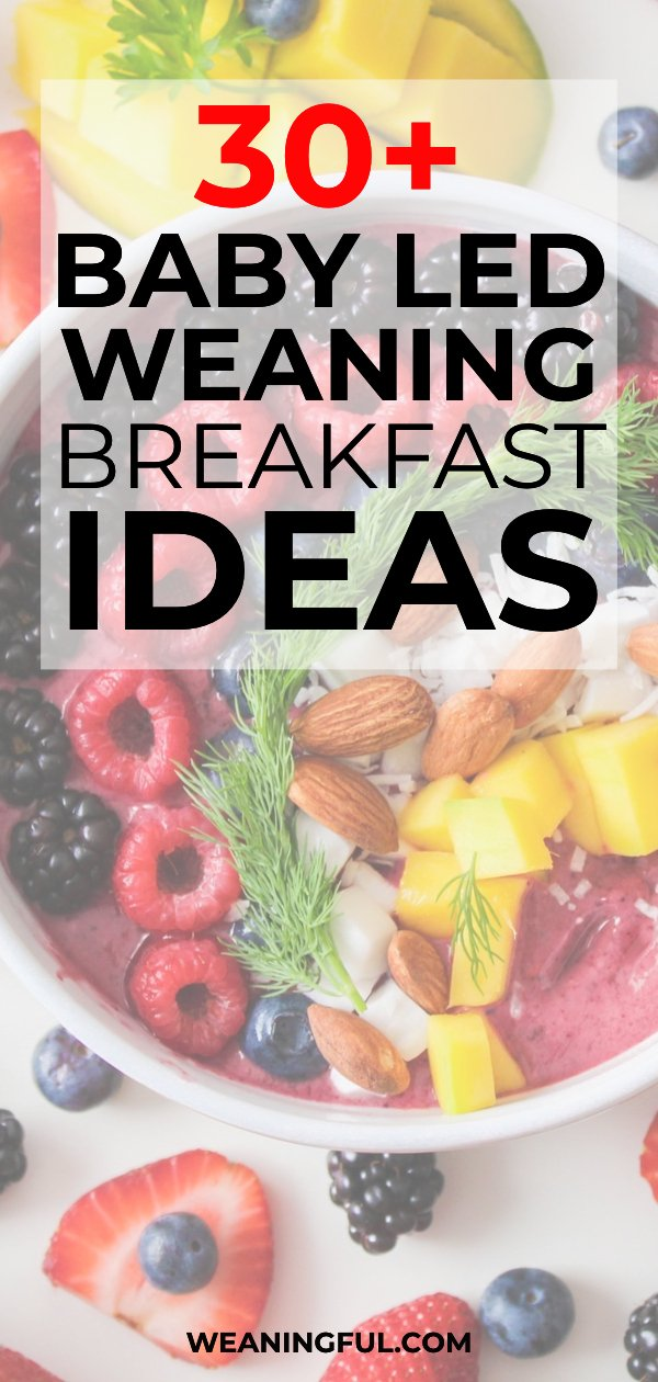 Looking for healthy breakfast ideas for your little one? This list of over 30 ideas is great both for baby led weaning and traditional weaning alike, and it's packed with great finger foods and first foods for babies 6 months and up.