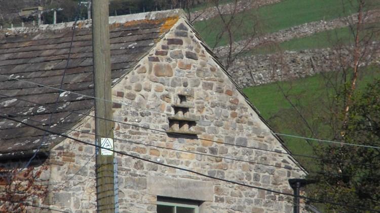 Dovecote in farmhouse near Westgate (2)