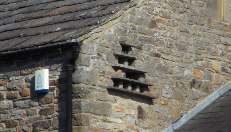 Dovecote in farmhouse near Westgate
