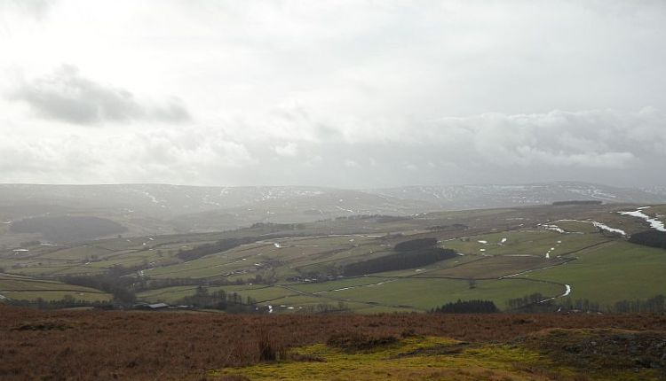Weardale seen from Dodder Hill