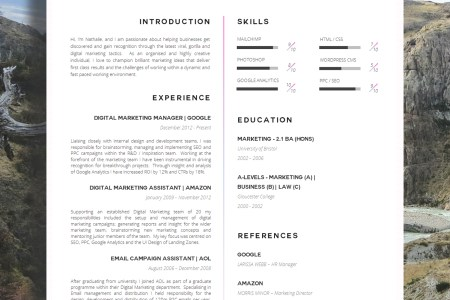 17 Awesome Examples of Creative CV Templates   Guru Creative CV Templates