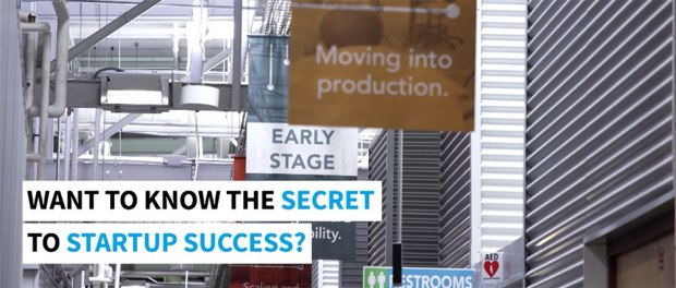 The Secrets to Early-Stage Startup Success