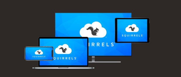 Software developer Squirrels