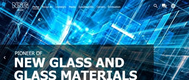 NSG Group screencapture of homepage website -