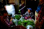 Burmese women negotiating at peak hours.