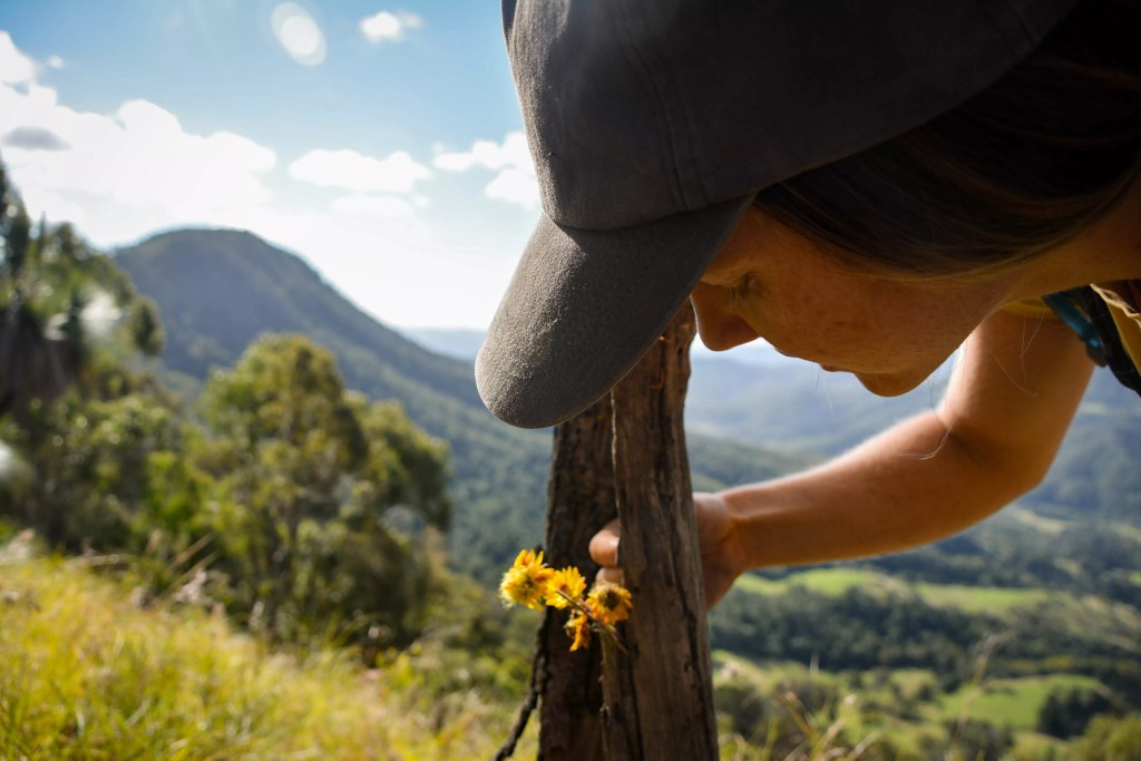 Lisa Owen Neglected Mountain Scenic Rim QLD Scout Hinchliffe