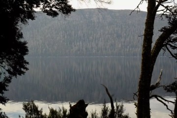 Sam Christie, Lake St Clair, Tasmania, reflection, pine tree, lake
