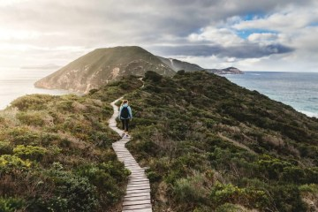 Bald Head Walking Trail, Torndirrup Albany, WA, boardwalk, walker, headland, ocean
