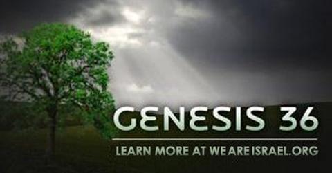 Genesis 36, mistakes in Torah, perversions in Torah, who were Esau's wives, wives of Esau