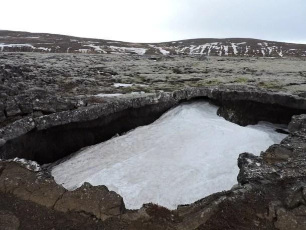 vidgelmir-cave
