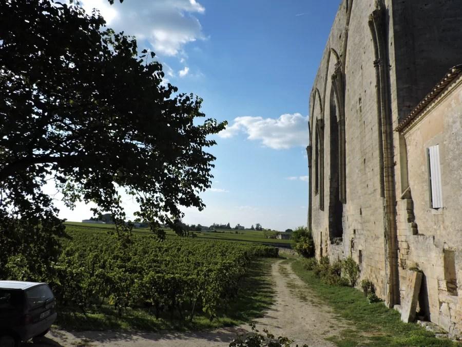 St Emilion la bellezza dei campi subito fuori St Emilion in una giornata di sole
