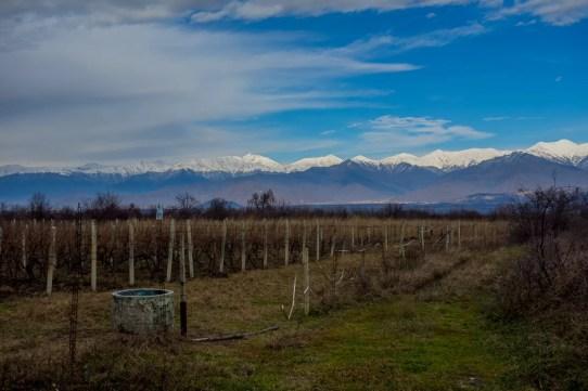 vitigni, montagne e campagna georgiana nella regione del Kakheti