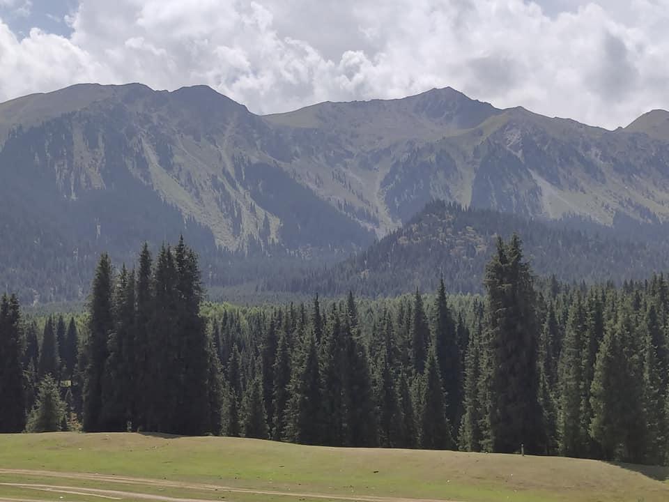 Le montagne oltre le pinete a Jety Oguz vicino Karakol