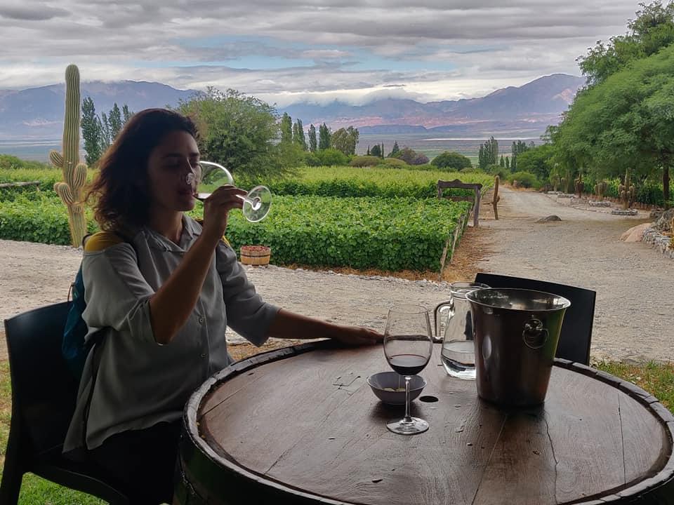 la bodega domingo molina offre vini torrontes e malbec a Cafayate