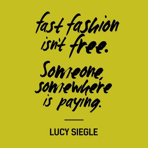 Fast Fashion Isn't Free Quote REVISED