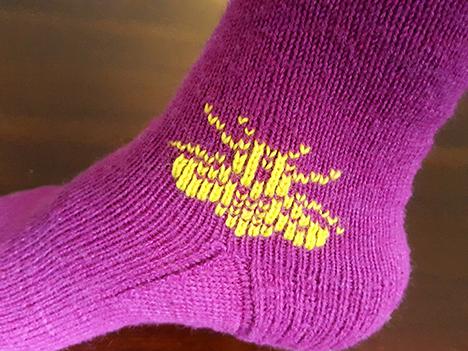 bee-sock