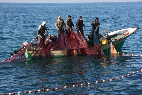 Gaza fishermen work with nets