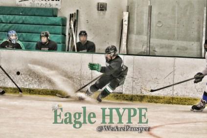 aa_aprosperhockey_359