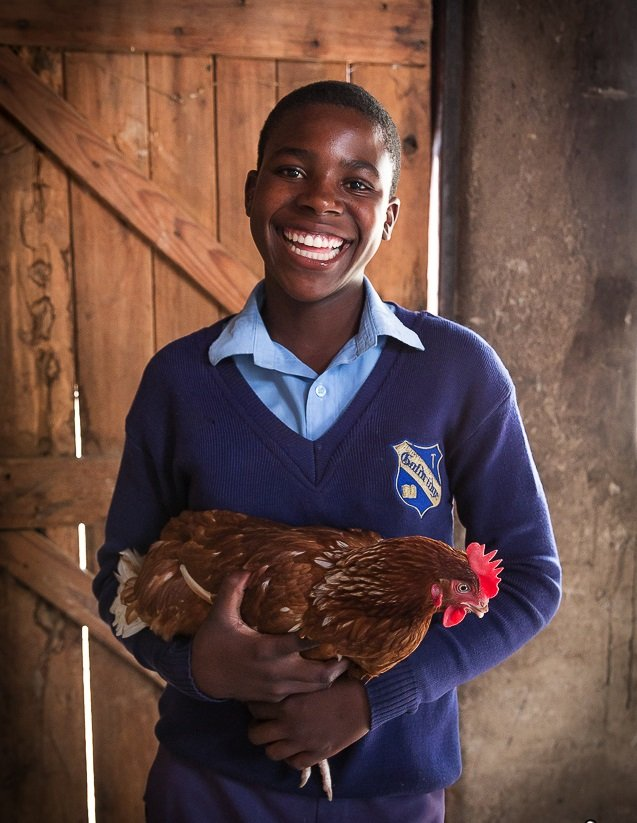 """Even though we had little money it was possible to return to school because of knowing Restless Development. I help feeding the chickens, taking care of them and looking after them. Then we sell the eggs at the market."" Samantha, 15, is also a member of our layer hens project in Zimbabwe. (PC Restless Development/ Bad Rabbit Studios)"
