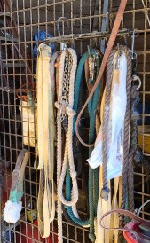 horse leads and other equipment hung neatly on a wire rack in a horse barn.