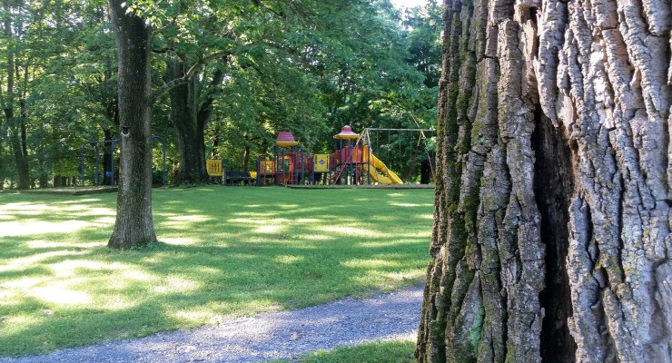 A cheery playground in the distance at Morgan's Grove Park near Shepherdstown.