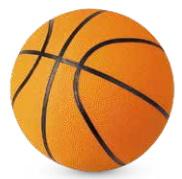 wilton bradley basketball